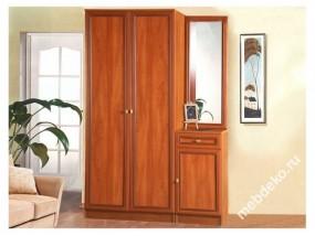 Набор мебели для прихожей Салют-13