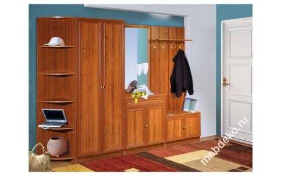 Набор мебели в прихожую Салют-5 с угловым элементом