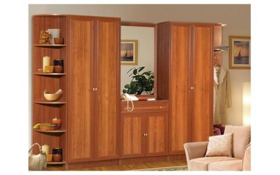 Набор мебели для прихожей Салют-6 с двумя распашными шкафами