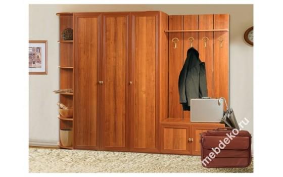 Комплект мебели в прихожую Салют-9 с 3-х створчатым распашным шкафом