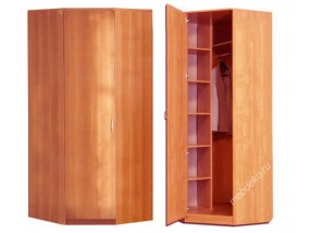 Шкаф угловой однодверный